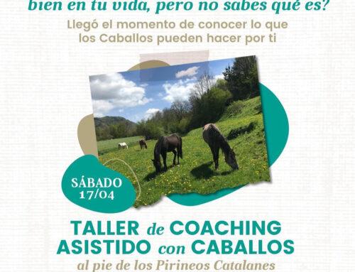 Taller coaching con caballos 170421