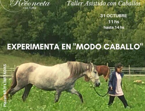 Explora la presencia entre caballos libres